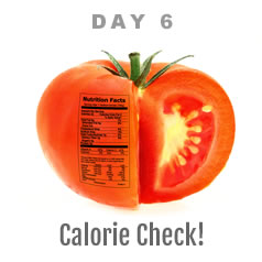 Day 6