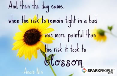 Motivational Quote - And then the day came, when the risk to remain tight in a bud was more painful than the risk it took to blossom.