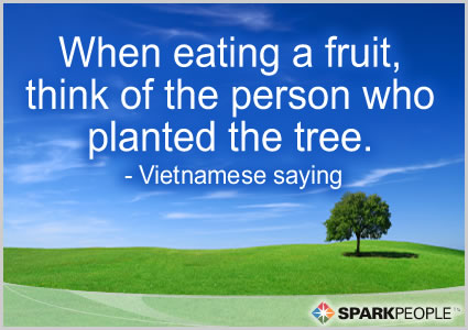 Motivational Quote - When eating a fruit, think of the person who planted the tree.