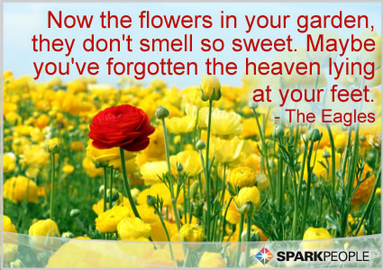 Motivational Quote - Now the flowers in your garden, they don't smell so sweet. Maybe you've forgotten the heaven lying at your feet.
