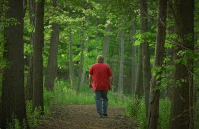 Destress yourself!  Walk_in_woods