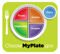 Differences Between Food Pyramid and Plate | SparkPeople