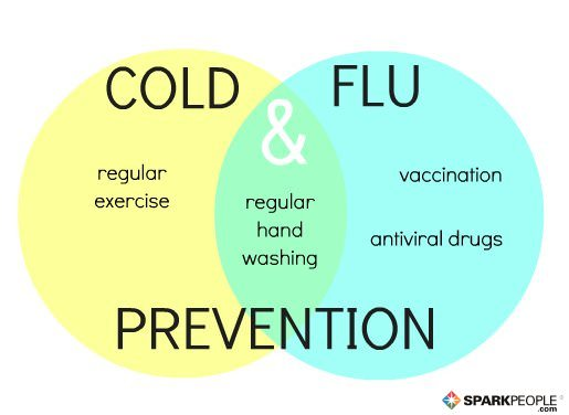 preventing the flu Nervous about catching the flu this season webmd provides key strategies for  flu prevention.