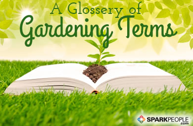 glossary of gardening terms sparkpeople