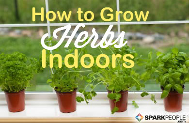 Herb Garden Indoor how to start an indoor herb garden | sparkpeople