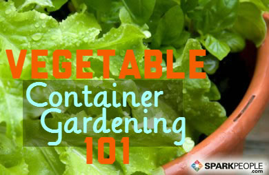Container Vegetable Garden Ideas herbs growing in a potted container garden cute container garden idea A Beginners Guide To Container Vegetable Gardening Sparkpeople
