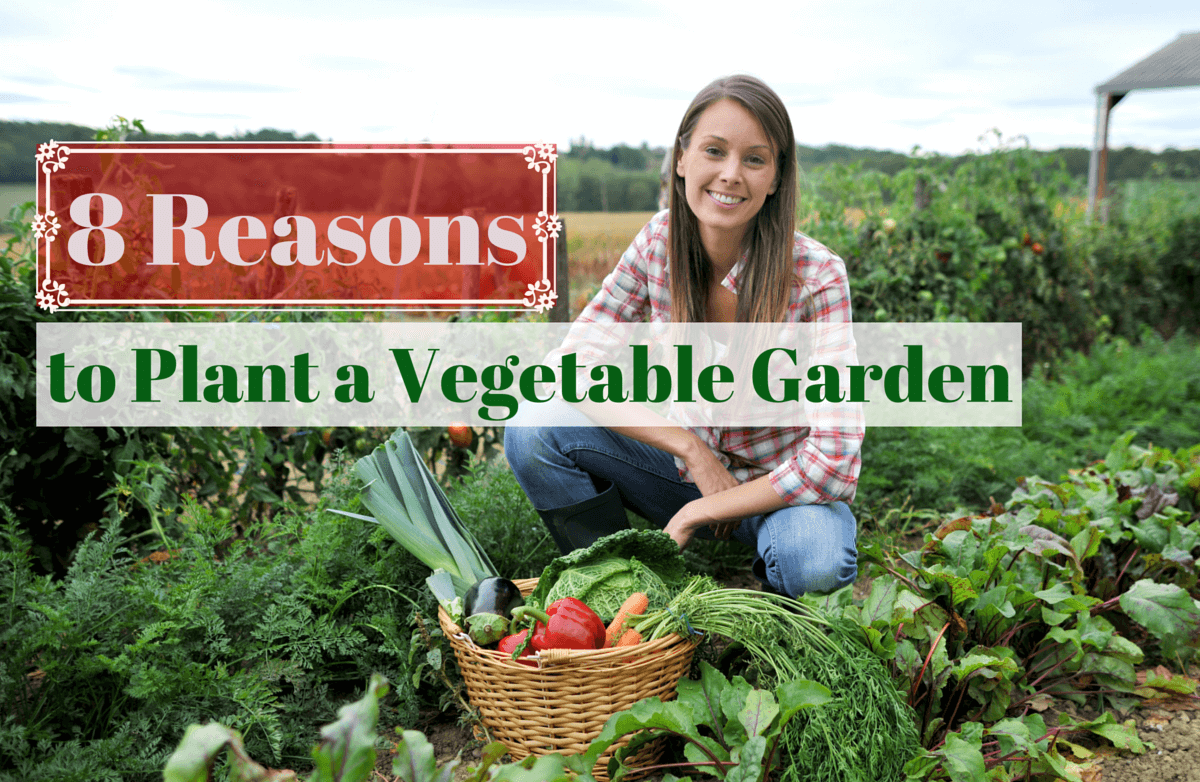 the benefits of growing your own food sparkpeople
