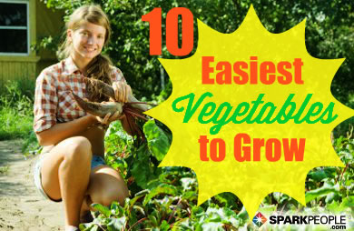 how to grow big vegetables