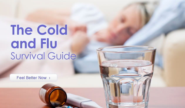 The Cold and Flu Survival Guide