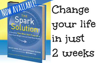 'The Spark Solution' Now Available!