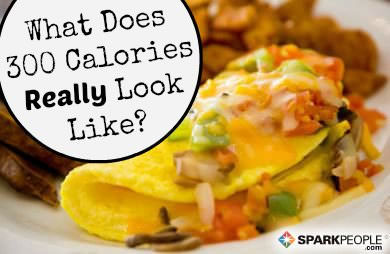 what do 300 calorie meals really look like sparkpeople
