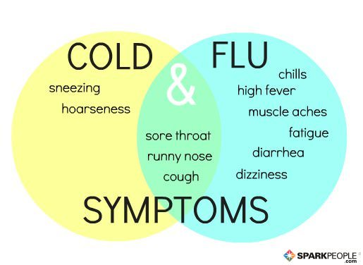 Is It a Cold or the Flu? | SparkPeople