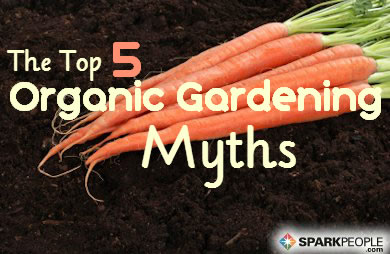 The Top 5 Myths about Organic Gardening