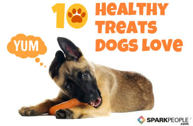 10 'People Foods' You Can Feel Good about Feeding Your Dog