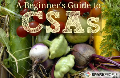 A Getting-Started Guide to CSAs